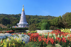 The Pagoda with Colorful flowers blowing in the wind motion blur. At Doi inthanon National Park Chiangmai , Thailand Stock Photo