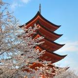 Pagoda com árvores de cereja imagens de stock