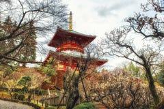 Pagoda con il fiore di ciliegia Fotografia Stock Libera da Diritti