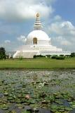 Pagoda de la paz del mundo Fotos de archivo libres de regalías