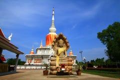 Pagoda de Nadoon Imágenes de archivo libres de regalías