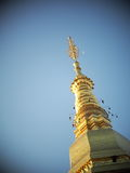 Pagoda de oro TAILANDIA del norte del stupa del buddhism Foto de archivo