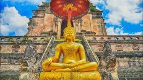 Pagoda del syk de Timelapse y estatua hermosas de Buda en el templo de Wat Chedi Luang almacen de metraje de vídeo