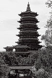 Pagoda del Taoist Fotografía de archivo
