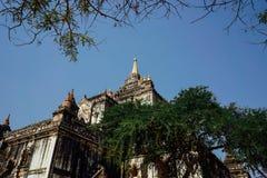 Pagoda del tempio di Thatbinnyu in Bagan Myanmbar Burma fotografie stock