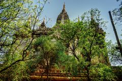 Pagoda del tempio di Thatbinnyu in Bagan Myanmbar Burma fotografie stock libere da diritti