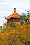 Pagoda di autunno Fotografia Stock Libera da Diritti