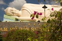 Pagoda di Vinh Tranh nel mio Tho, il delta del Mekong, Vietnam immagine stock