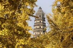 Pagoda do monte do tigre, Suzhou Fotos de Stock Royalty Free