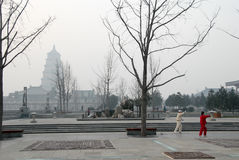 Pagoda gigante e la gente dell'oca selvatica che giocano 'chi' del Tai chuan, di mattina, Xi `, Cina Immagini Stock