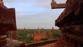 Pagoda hermosa almacen de video