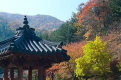 Pagoda i Fall Arkivbilder
