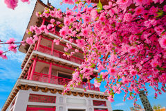 Pagoda japan style and Sakura flowers with blue sky background Royalty Free Stock Photography