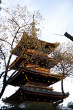 Pagoda in Japan Stock Image