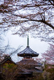Pagoda japonesa con Sakura en Yoshino Mountain fotos de archivo libres de regalías