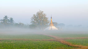 Pagoda in the mist Royalty Free Stock Photos