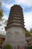 Pagoda of monk Wansong Stock Photos
