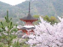 Pagoda na chuva imagem de stock