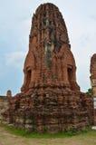 Pagoda nociva Fotografia Stock