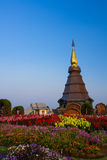 Pagoda in the north of Thailand. Stock Images