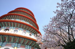 Pagoda and plum flowers Royalty Free Stock Images
