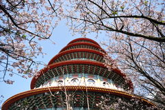 Pagoda and plum flowers Royalty Free Stock Photo