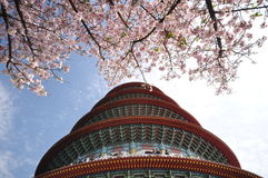 Pagoda and plum flowers Stock Image
