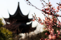 Pagoda in the Plum Garden Stock Photos