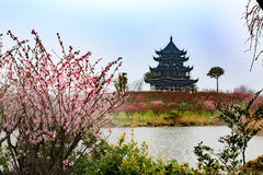 Pagoda in the Plum Garden Stock Photography