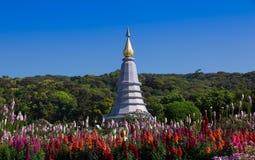 Pagoda przy Doi Inthanon parkiem narodowym zdjęcia royalty free