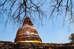 Pagoda Royalty Free Stock Photos