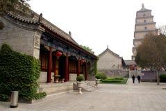 Pagoda salvaje del ganso Imagenes de archivo