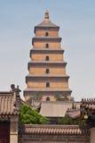 Pagoda salvaje gigante del ganso Imagen de archivo libre de regalías