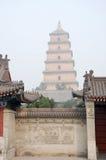 Pagoda sauvage géante d'oie Image libre de droits