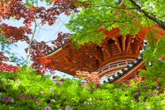 Pagoda Seen Through Japanese Maple Trees Royalty Free Stock Photos