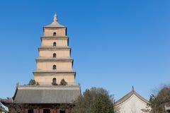 Pagoda selvaggio gigante dell'oca Fotografia Stock
