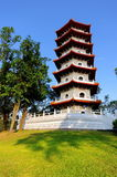 Pagoda in Singapore Chinese Garden royalty free stock photos