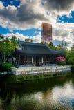 Pagoda and skyscraper at the Lan Su Chinese Garden in Portland, stock photos