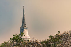 Pagoda in sunlight. Sky and white frangipani stock images
