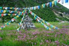 Pagoda Tibet Royaltyfri Foto