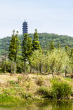 The pagoda at the top of the mountain Royalty Free Stock Image