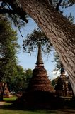 Pagoda with tree in foreground Stock Photos
