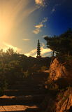 Pagoda under the setting sun. On a Shandong China mountain, the pagoda calmly stands erect under the setting sun Royalty Free Stock Photo