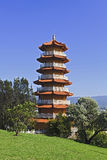 Pagoda Vert Trees Royalty Free Stock Photo
