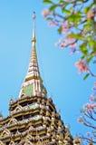 Pagoda in Wat Phrabuddhabat Stock Photography