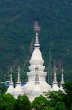Pagoda Wuxi Cina di Manfeilong immagine stock