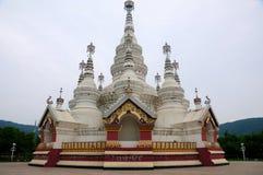Pagoda Wuxi Cina di Manfeilong immagini stock libere da diritti