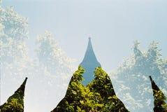 Pagoda z naturą obrazy royalty free
