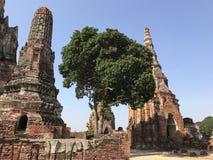 pagodas Imagenes de archivo
