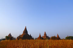 Pagodas of Bagan at Sunrise. The temples and pagodas stood on the plains of Bagan, in Myanmar (Burma). The scency see from the Buledi Phaya nearby in sunrise royalty free stock photography